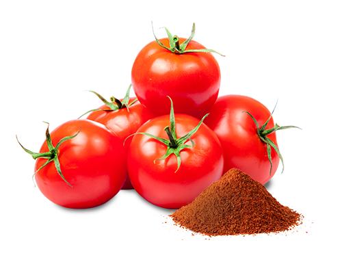 Soupe de tomates aux épices Médina